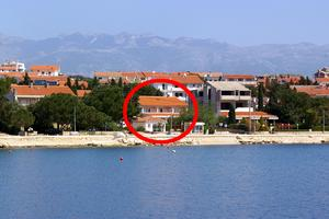 Apartments and rooms by the sea Novalja (Pag) - 4067
