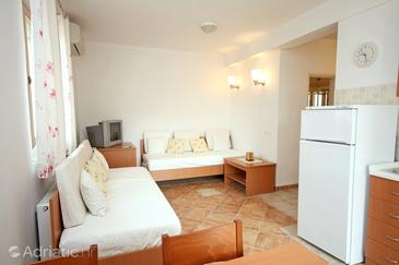 Ražanj, Living room in the apartment, air condition available and WiFi.