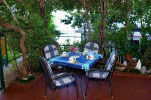 Seaside holiday house Podgora, Makarska - 4331