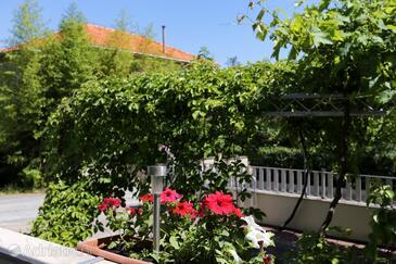 Terrace   view  - A-4513-b