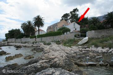 Orebić, Pelješac, Property 4521 - Apartments near sea with rocky beach.