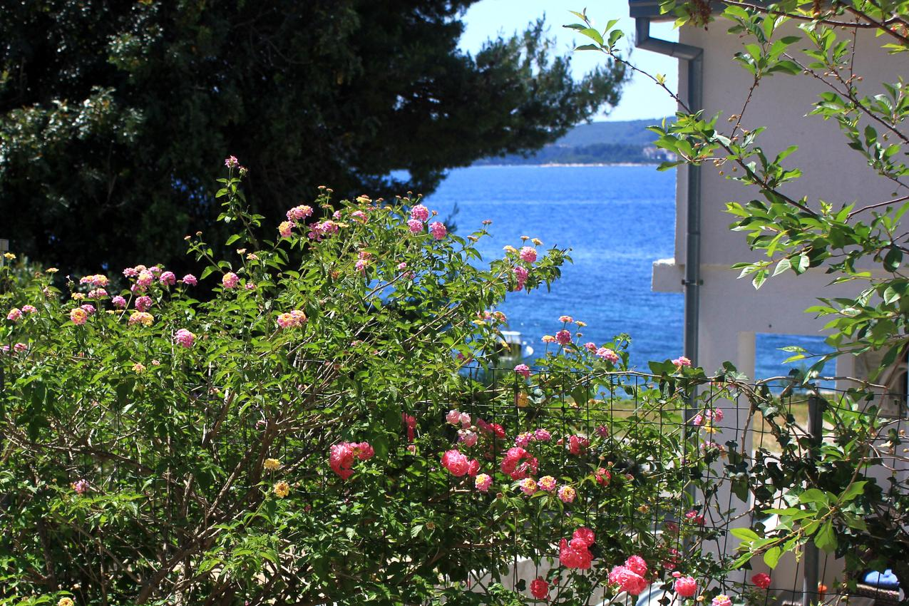 Ferienwohnung im Ort Kuiate - Perna (Peljeaac), Kapazität 2+2 (1013616), Kuciste, Insel Peljesac, Dalmatien, Kroatien, Bild 20