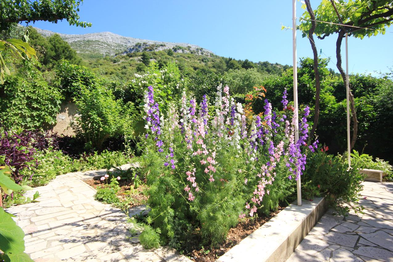 Ferienwohnung im Ort Kuiate - Perna (Peljeaac), Kapazität 4+0 (1013638), Kuciste, Insel Peljesac, Dalmatien, Kroatien, Bild 25