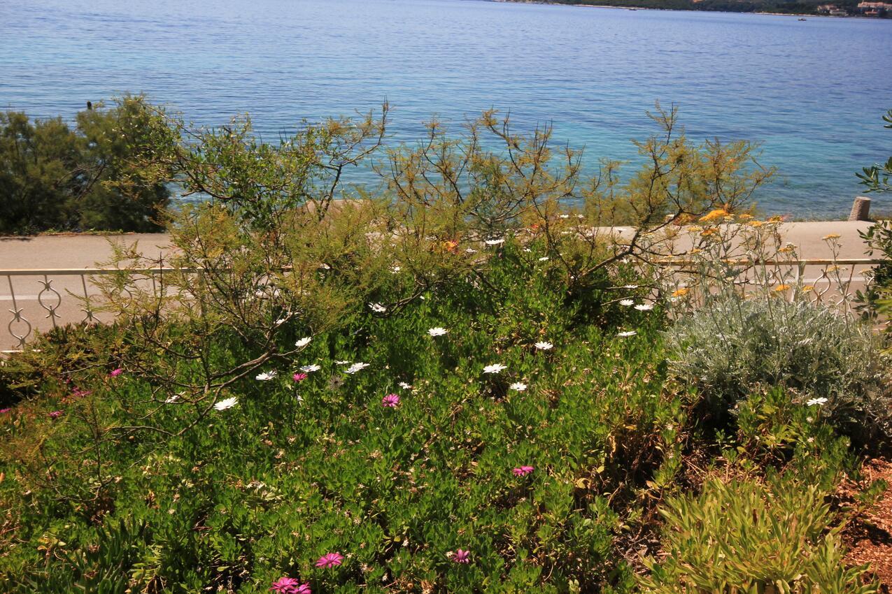 Ferienwohnung im Ort Kuiate - Perna (Peljeaac), Kapazität 4+0 (1013638), Kuciste, Insel Peljesac, Dalmatien, Kroatien, Bild 27