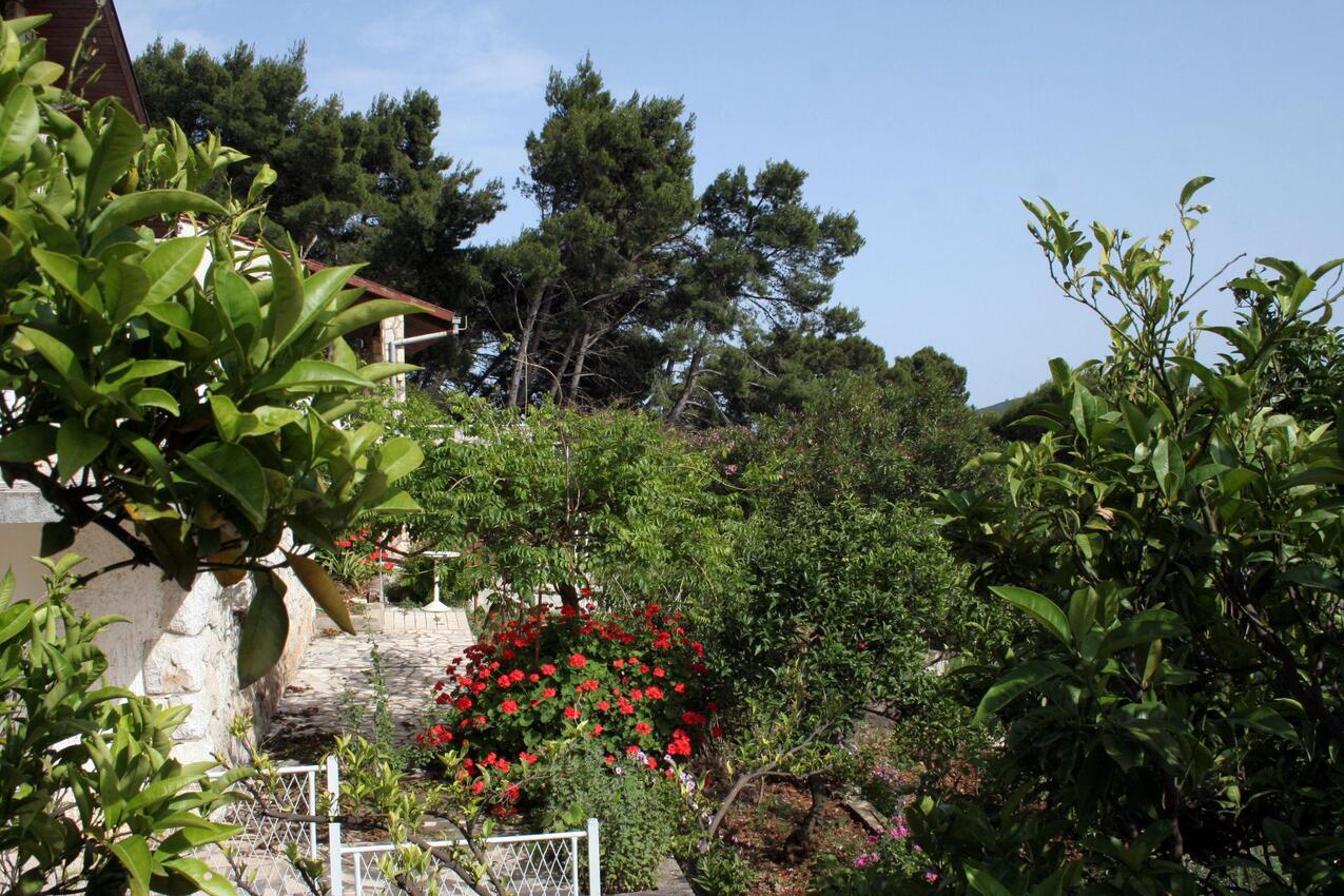 Ferienwohnung im Ort Kuiate - Perna (Peljeaac), Kapazität 2+2 (1013629), Kuciste, Insel Peljesac, Dalmatien, Kroatien, Bild 11