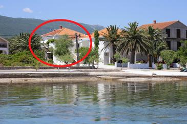 Sreser, Pelješac, Property 4556 - Apartments and Rooms by the sea.