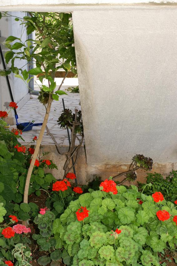 Ferienwohnung im Ort Kuiate - Perna (Peljeaac), Kapazität 2+2 (1013674), Kuciste, Insel Peljesac, Dalmatien, Kroatien, Bild 22