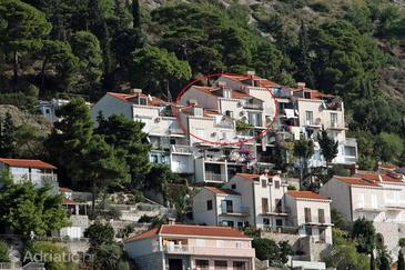Dubrovnik, Dubrovnik, Property 4730 - Apartments with pebble beach.