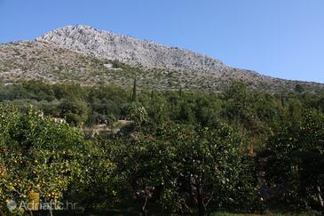 Terrace   view  - A-4746-a