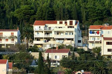 Dubrovnik, Dubrovnik, Property 4768 - Apartments with pebble beach.