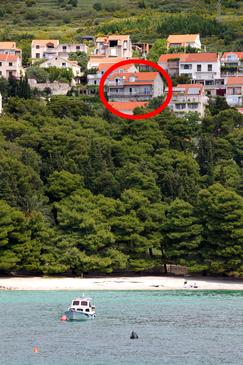 Mlini, Dubrovnik, Property 4772 - Apartments and Rooms with pebble beach.