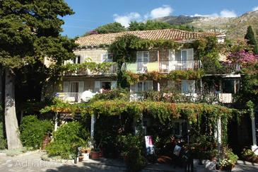 Mlini, Dubrovnik, Property 4780 - Apartments and Rooms near sea with pebble beach.