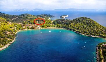 Saplunara, Mljet, Objekt 4901 - Ubytování v blízkosti moře s písčitou pláží.