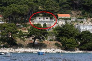 Apartments by the sea Cove Saplunara (Mljet) - 4906