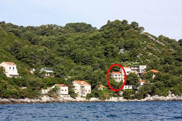 Sobra, Mljet, Property 4908 - Apartments by the sea.