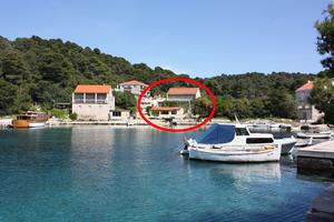 Rooms by the sea Pomena, Mljet - 4918