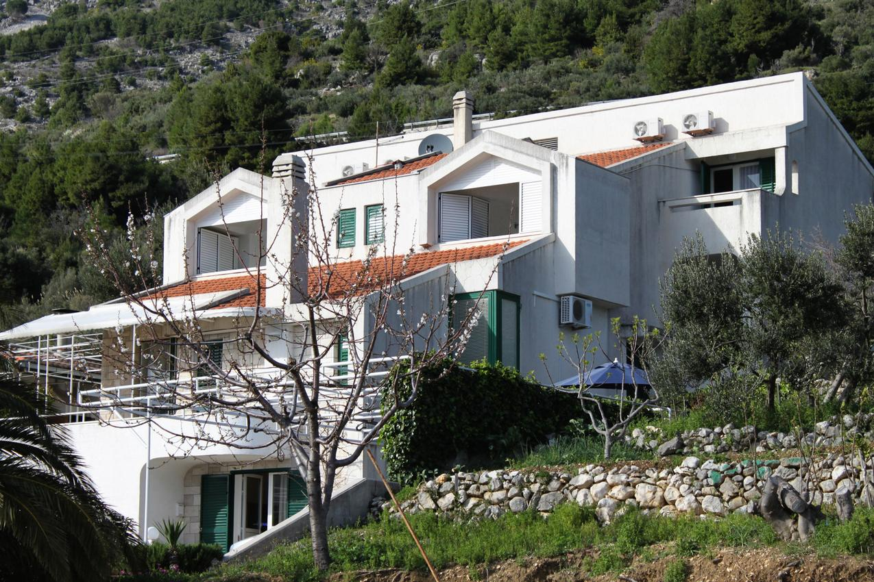 Studio Appartment im Ort Igrane (Makarska), Kapazi Ferienwohnung