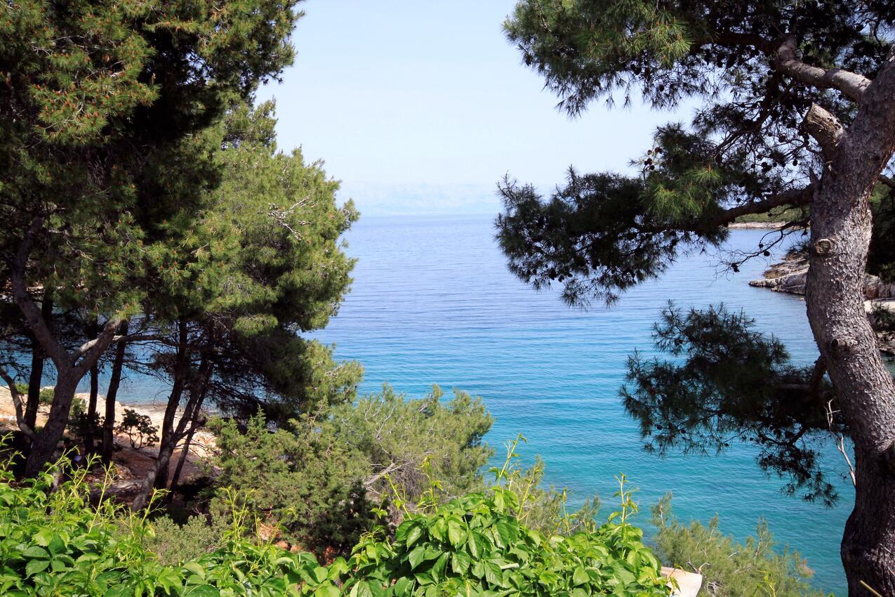Ferienwohnung im Ort Basina (Hvar), Kapazität 4+1 (1012714), Vrbanj, Insel Hvar, Dalmatien, Kroatien, Bild 15