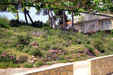 Terrace   view  - AS-542-a