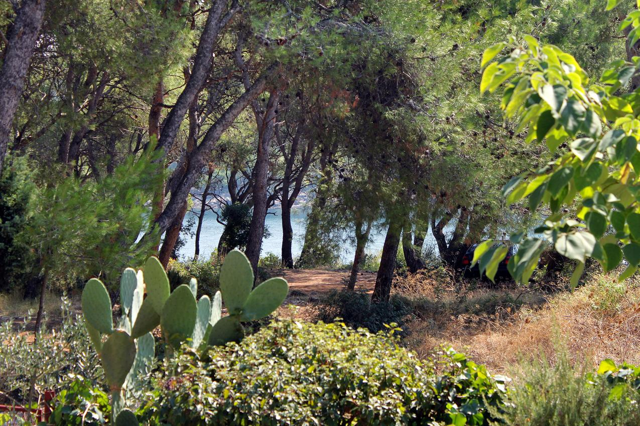Ferienwohnung im Ort Mudri Dolac (Hvar), Kapazität 4+3 (1011576), Vrbanj, Insel Hvar, Dalmatien, Kroatien, Bild 14