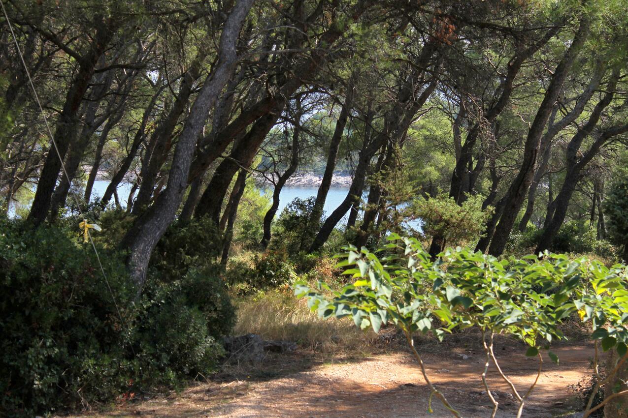 Ferienwohnung im Ort Mudri Dolac (Hvar), Kapazität 4+3 (1011576), Vrbanj, Insel Hvar, Dalmatien, Kroatien, Bild 15