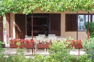 Apartments by the sea Nemira, Omiš - 5884