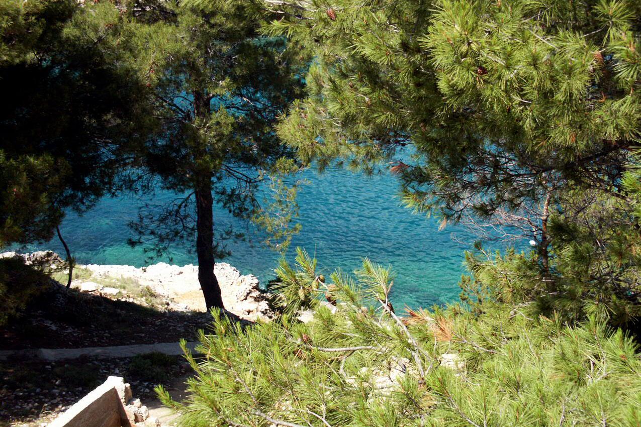 Ferienwohnung im Ort Mudri Dolac (Hvar), Kapazität 4+1 (1012727), Vrbanj, Insel Hvar, Dalmatien, Kroatien, Bild 13