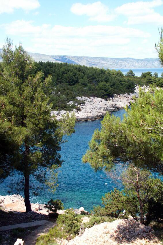 Ferienwohnung im Ort Mudri Dolac (Hvar), Kapazität 4+1 (1012727), Vrbanj, Insel Hvar, Dalmatien, Kroatien, Bild 11