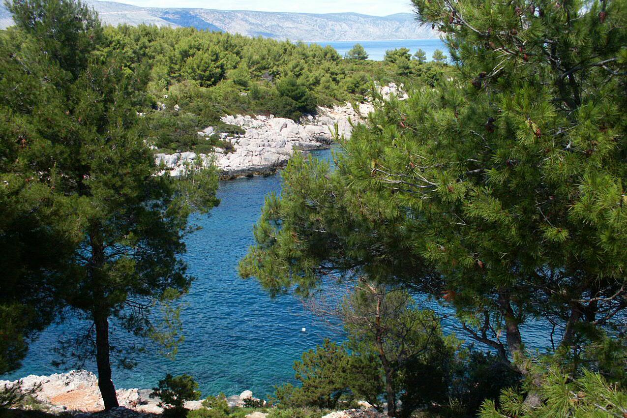 Ferienwohnung im Ort Mudri Dolac (Hvar), Kapazität 4+1 (1012728), Vrbanj, Insel Hvar, Dalmatien, Kroatien, Bild 12