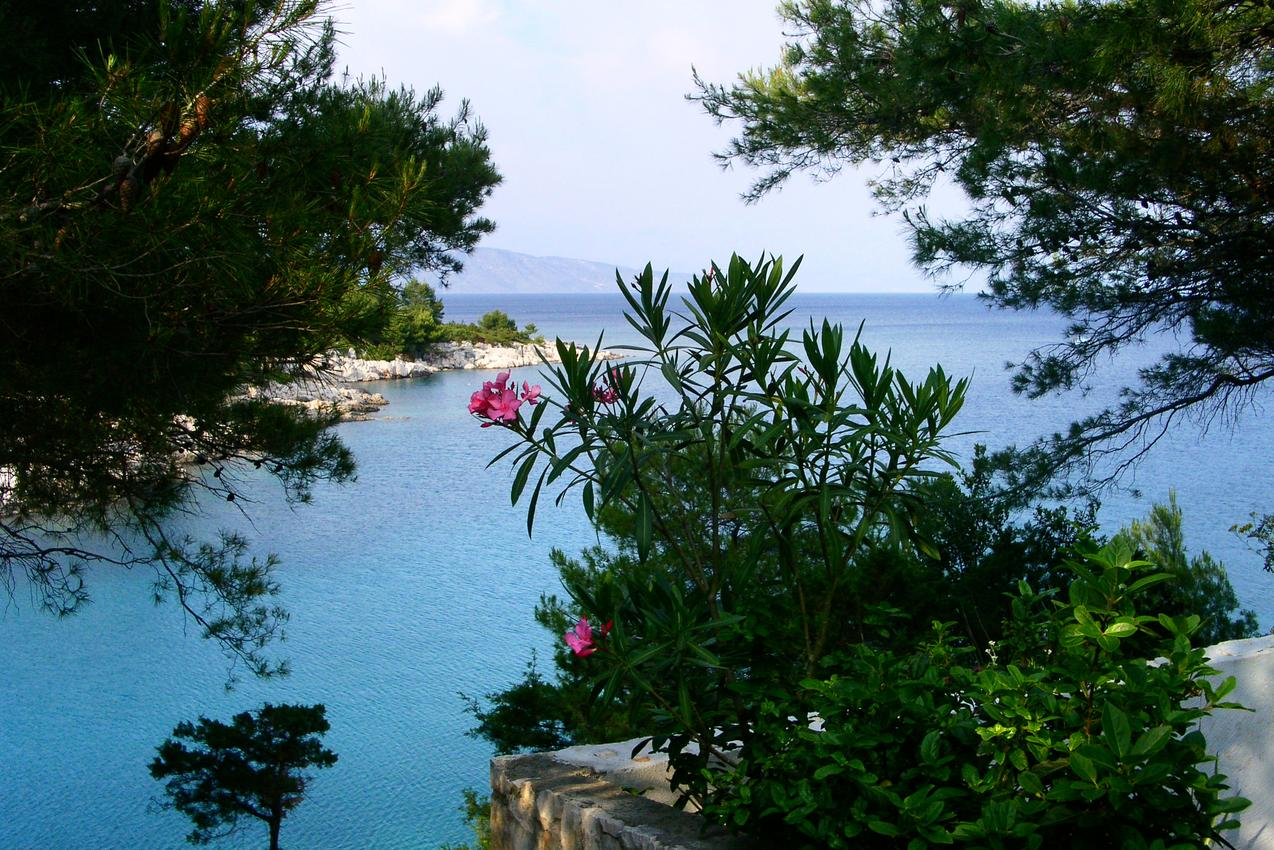 Ferienwohnung im Ort Mudri Dolac (Hvar), Kapazität 4+1 (1012728), Vrbanj, Insel Hvar, Dalmatien, Kroatien, Bild 20
