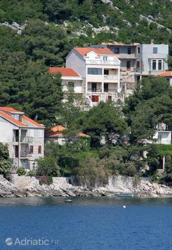Sobra, Mljet, Property 600 - Apartments by the sea.