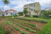 Apartmány u moře Posedarje (Novigrad) - 6190