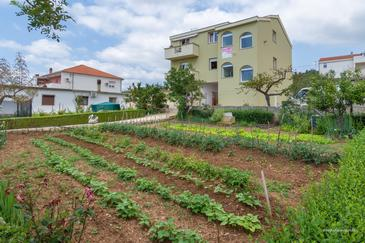 Posedarje, Novigrad, Property 6190 - Apartments near sea with pebble beach.