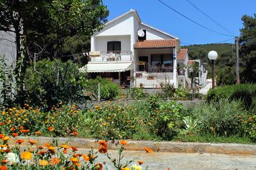 Brgulje, Molat, Property 6242 - Apartments by the sea.
