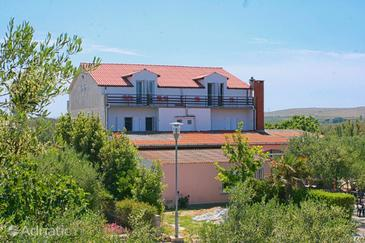 Povljana, Pag, Property 6362 - Apartments and Rooms near sea with sandy beach.