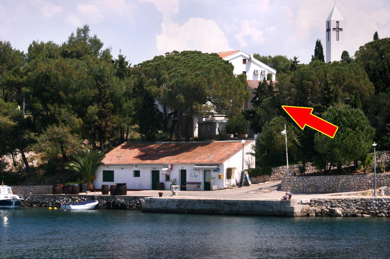 Ferienwohnung im Ort Mandre (Pag), Kapazität 2+2 (1011836), Mandre, Insel Pag, Kvarner, Kroatien, Bild 1
