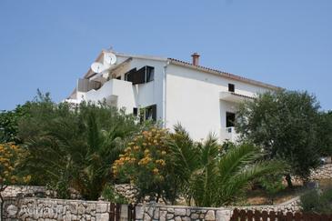 Mandre, Pag, Property 6546 - Apartments in Croatia.