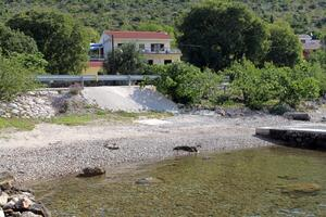 Apartments by the sea Seline, Paklenica - 6564
