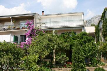 Podgora, Makarska, Property 6646 - Apartments with pebble beach.