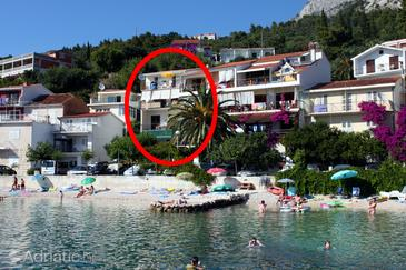 Podgora, Makarska, Property 6670 - Apartments near sea with pebble beach.