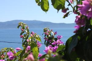 Apartmány u moře Podaca, Makarská - Makarska - 6745
