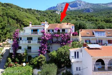 Podgora, Makarska, Объект 6790 - Апартаменты и комнаты с галечным пляжем.