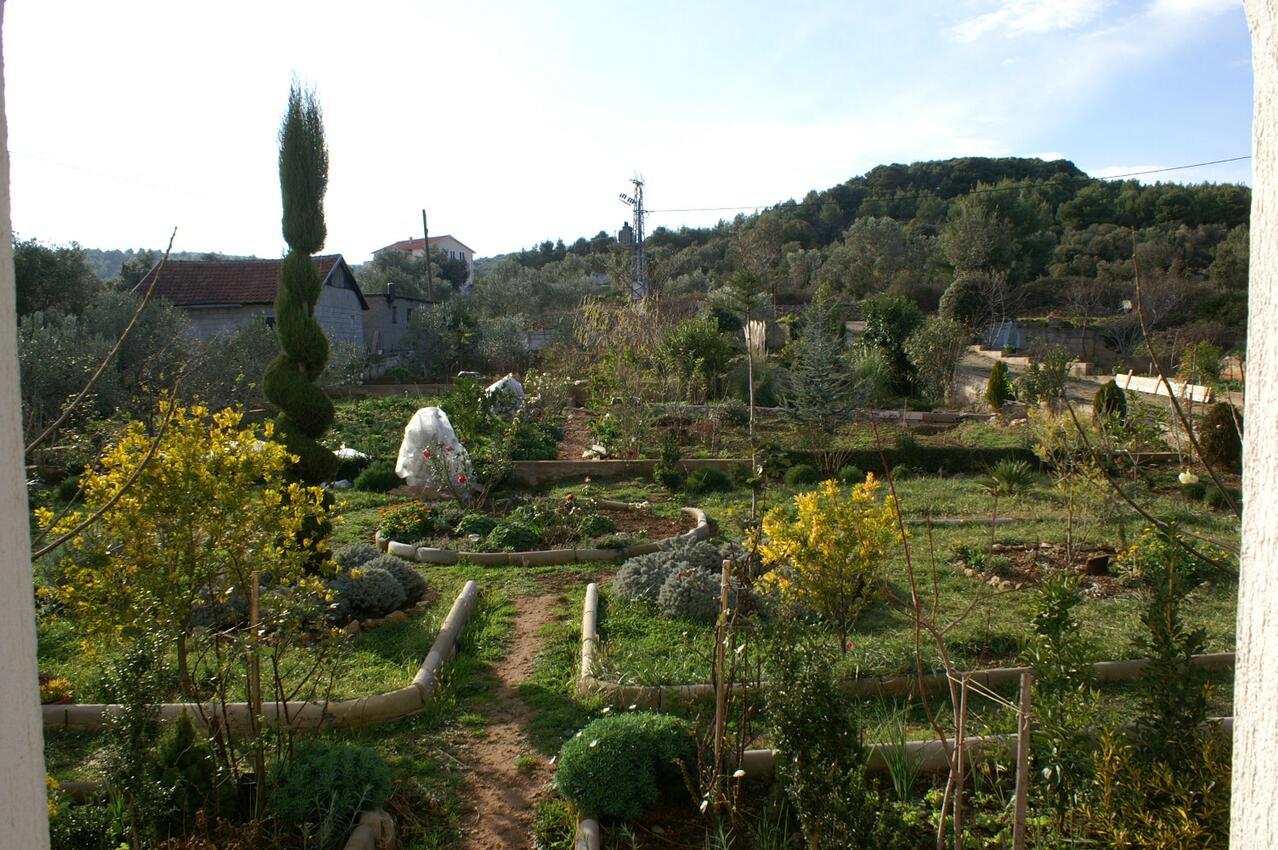 Ferienwohnung im Ort Neviane (Paaman), Kapazität 4+1 (1013429), Nevidane, Insel Pasman, Dalmatien, Kroatien, Bild 14