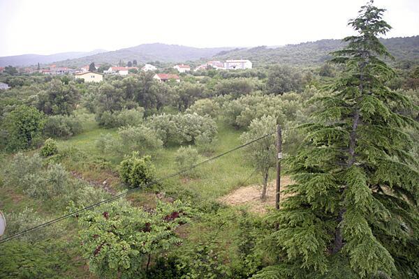 Ferienwohnung im Ort Neviane (Paaman), Kapazität 4+1 (1012619), Nevidane, Insel Pasman, Dalmatien, Kroatien, Bild 12