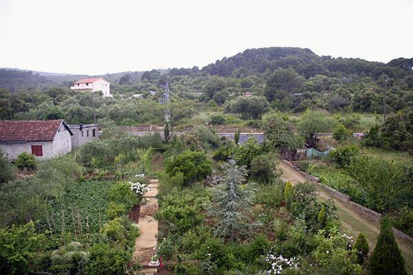 Ferienwohnung im Ort Neviane (Paaman), Kapazität 4+1 (1012619), Nevidane, Insel Pasman, Dalmatien, Kroatien, Bild 14