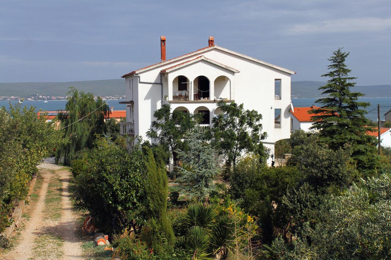 Ferienwohnung im Ort Neviane (Paaman), Kapazität 4+1 (1013429), Nevidane, Insel Pasman, Dalmatien, Kroatien, Bild 15
