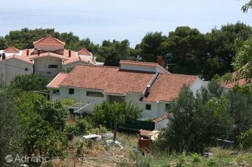 Živogošće - Porat, Makarska, Property 6899 - Apartments near sea with pebble beach.