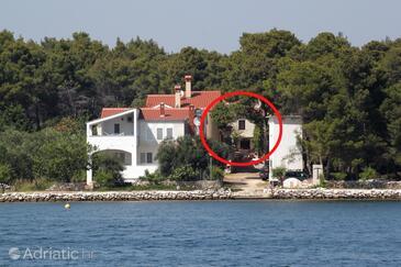 Verunić, Dugi otok, Property 8106 - Apartments by the sea.