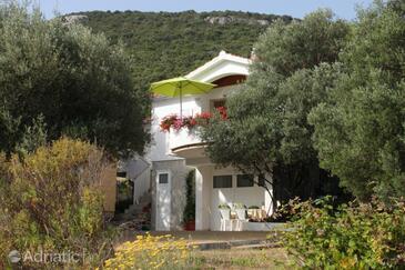 Luka, Dugi otok, Property 8131 - Apartments by the sea.