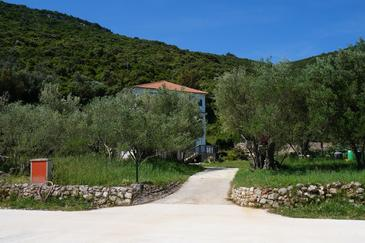 Luka, Dugi otok, Property 8151 - Apartments by the sea.